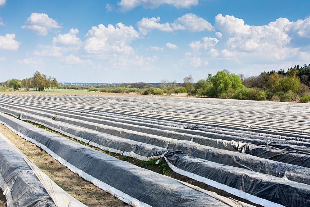 Regranulat CONTALEN stosuje się doprodukcji folii dla ogrodnictwa